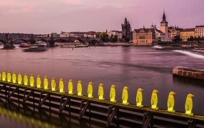 2019: Tercer puesto en el concurso Chromatic Awards en paisajes urbanos. Foto Yellow penguins.  Professional