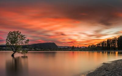 NZ. 2019 Medalla de Bronce en el concurso  PX3  PRIX DE LA PHPTOGRAPHIE PARIS. Dossier: Nature / Sunsets – Professional
