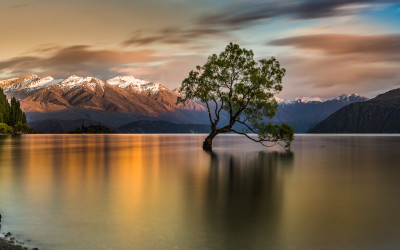 Lago Wanaka. Nueva Zelanda. Commended en el concurso Internacional Garden Photographer of the Year
